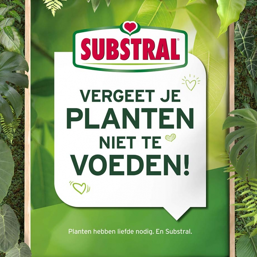 Evergreen Garden Care Substral 1370x913 plantentafelbord
